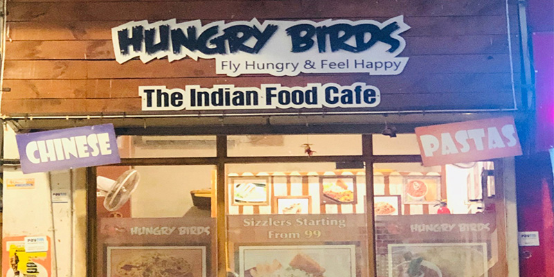 Hungry Birds Banner